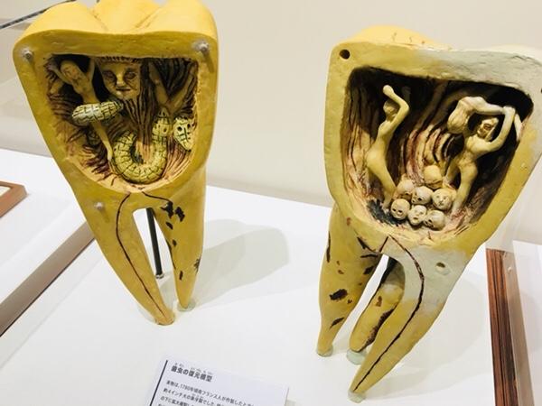名古屋市中区丸の内の入場無料の「歯の博物館」
