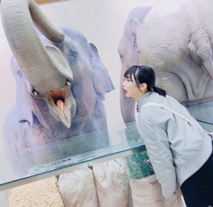 名古屋市の観光地|人気ランキング1位の動物園「東山動物園」